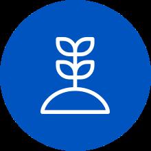 plant_circle